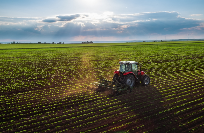 Türkiye, the Brand in Agriculture.